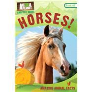 Horses! by Royce, Brenda Scott, 9781683308522