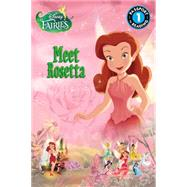 Disney Fairies: Meet Rosetta by Sisler, Celeste, 9780316378536