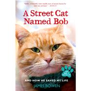 A Street Cat Named Bob And How He Saved My Life by Bowen, James, 9781250048677