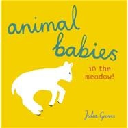 Animal Babies in the Meadow! by Groves, Julia, 9781846438790