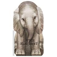 Little Elephant by Rigo, Laura, 9780764168796