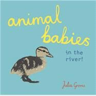 Animal Babies in the River! by Groves, Julia, 9781846438806