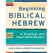 Beginning Biblical Hebrew by Cook, John A.; Holmstedt, Robert D.; Williams, Philip, 9780801048869