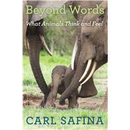 Beyond Words What Animals Think and Feel by Safina, Carl, 9780805098884