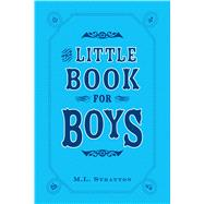 Little Book for Boys by Stratton, M. L., 9781440528958