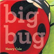 Big Bug by Cole, Henry; Cole, Henry, 9781442498976