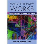 Why Therapy Works: Using Our Minds to Change Our Brains by Cozolino, Louis, 9780393709056