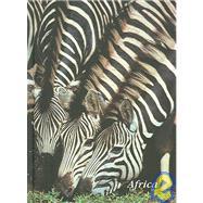 Journal - Zebra by Hoberman, Gerald, 9781919939131
