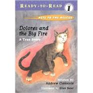 Dolores and the Big Fire by Clements, Andrew; Beier, Ellen, 9780689829161