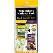Yellowstone National Park Adventure Set by Unknown, 9781583559185
