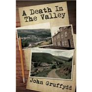 A Death in the Valley by Gruffydd, John, 9781849639224