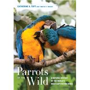 Parrots of the Wild: A Natural History of the World's Most Captivating Birds by Toft, Catherine A.; Wright, Timothy F., 9780520239258