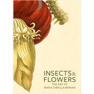 Insects and Flowers : The Art of Maria Sibylla Merian by David Brafman; Stephanie Schrader, 9780892369294