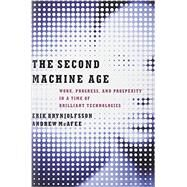 The Second Machine Age by Brynjolfsson, Erik; McAfee, Andrew, 9780393239355