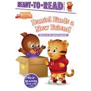 Daniel Finds a New Friend by Testa, Maggie; Fruchter, Jason, 9781534429383
