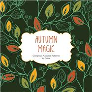 Autumn Magic by Barron's Educational, 9781438009384