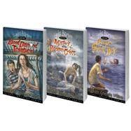 Lydia Barnes Series by Wilson, Heather Gemmen, 9780898279436