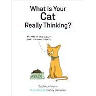 What Is Your Cat Really Thinking? by Johnson, Sophie; Dannyboy, 9781849539487