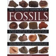 The Illustrated Handbook of Fossils by Parker, Steve, 9780754829591