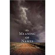 The Meaning of Names by Shoemaker, Karen Gettert, 9781597099592