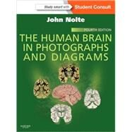 The Human Brain in Photographs and Diagrams by Nolte, John, Ph.D.; Angevine, Jay B., Jr., Ph.D., 9781455709618