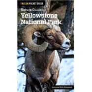 Nature Guide to Yellowstone National Park by Simpson, Ann; Simpson, Rob, 9781493009671