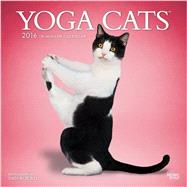 Yoga Cats 2016 Calendar by Borris, Dan, 9781465039842
