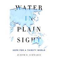 Water in Plain Sight Hope for a Thirsty World by Schwartz, Judith D., 9781250069917